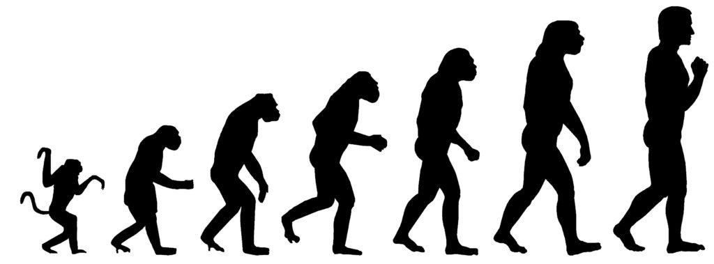 Влияние Омега3 на эволюцию человека