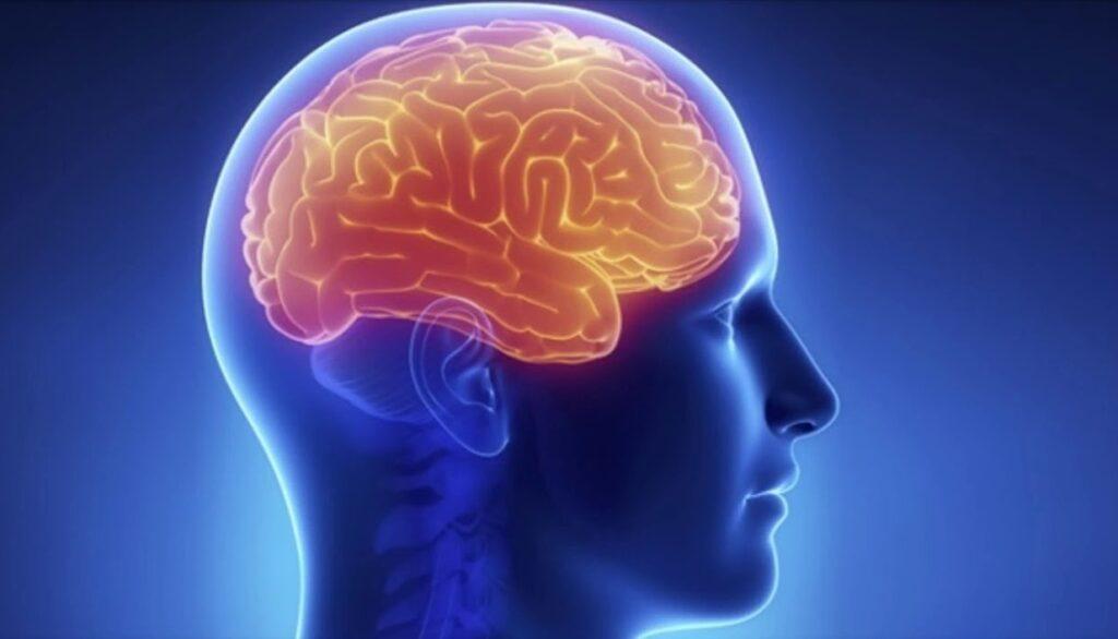Омега 3 при болезни Альцгеймера